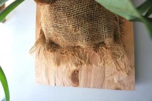 burlap cloth over fern roots