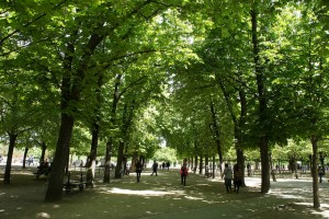 jardin du luxembourg | photo credit karolina buchner via dearhouseiloveyou.com